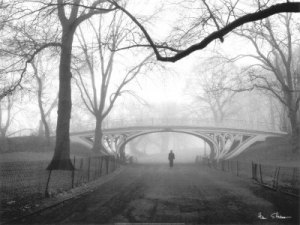 08271gothic-bridge-central-park-new-york-city-posters.jpg