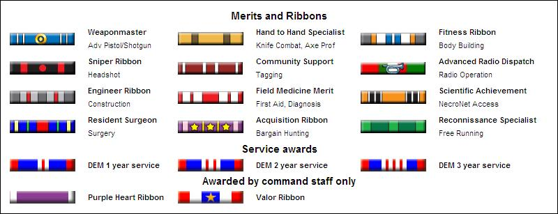 DEM Ribbons and Merits 3D.jpg